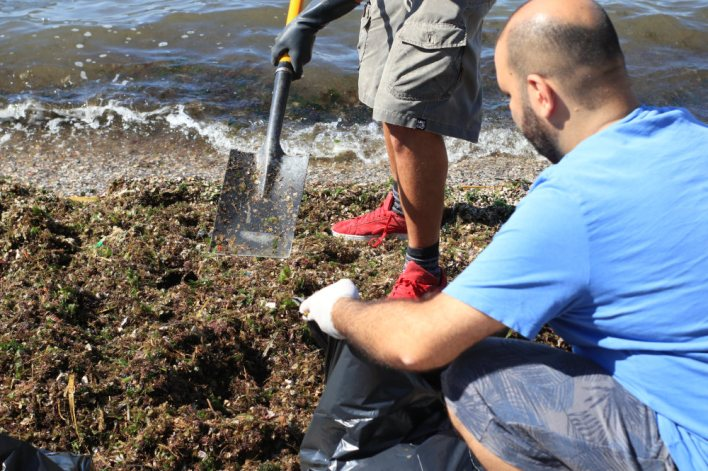Ένα πρωινό, 50 σακούλες σκουπίδια στην παραλία του Ασπρόπυργου (video)